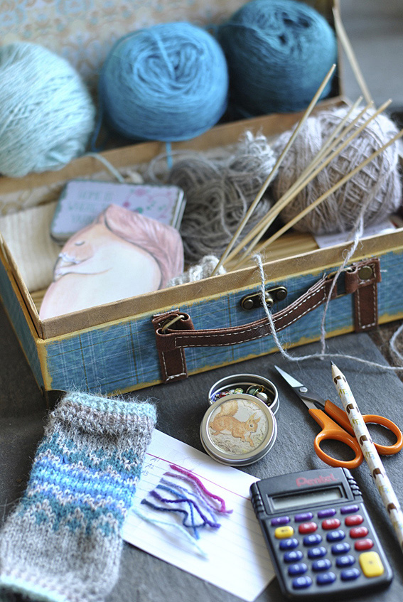 What-is-in-your-knitting-box-2web