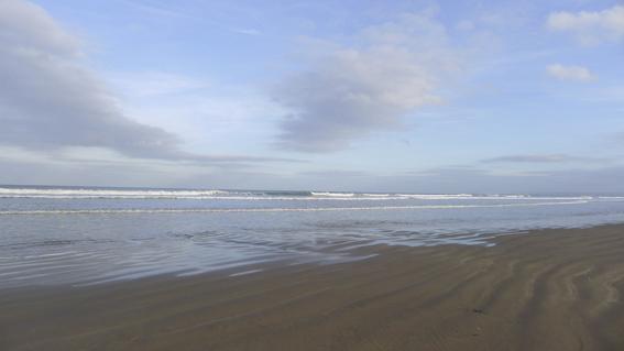 Beachcomber-cowl-3web