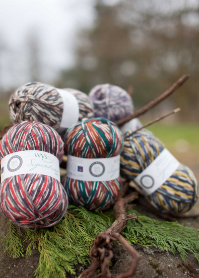 WYS Signature 4ply Sock Yarn - Country Birds