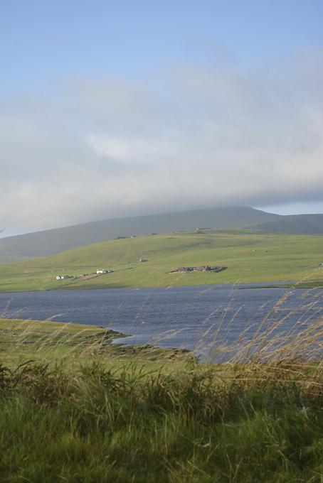 Wildrig, Shetland