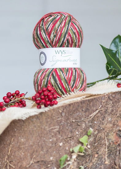 WYS Signature 4ply Christmas Special Holly Berry 886