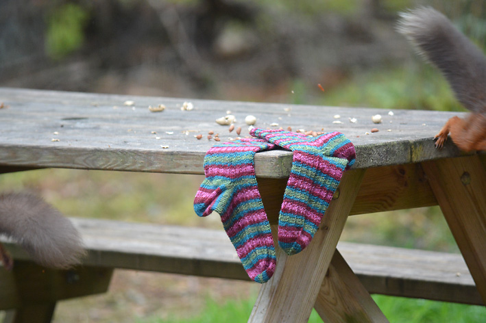 Red Squirrel and Hang Knit Socks 9