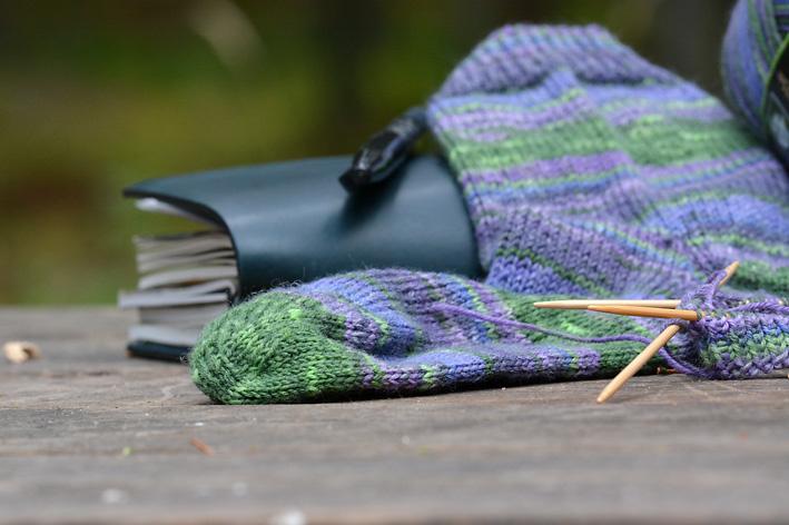 Rainforest Socks 12