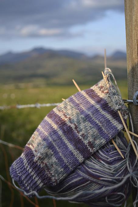 Wandering Socks Beenkeragh Gap Kerry