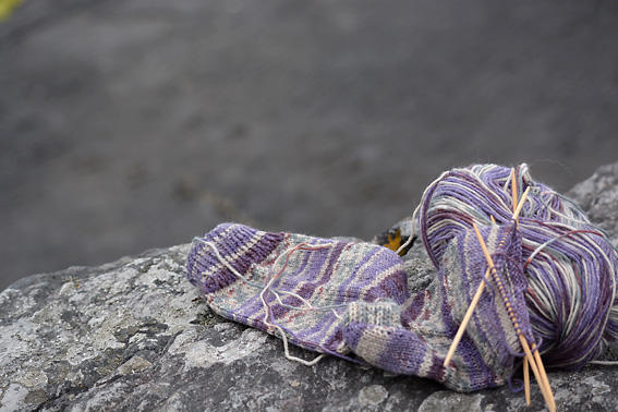 Wandering Socks Tetrapod Tracks