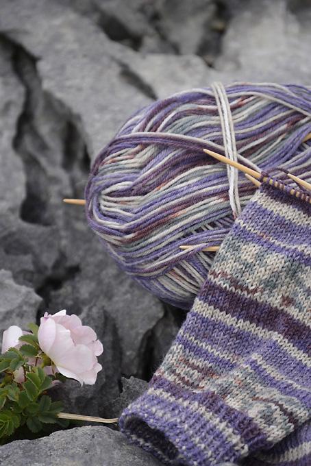 Wandering Socks The Burren